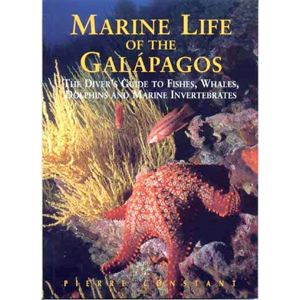 Americas: Marine Life of the Galapagos